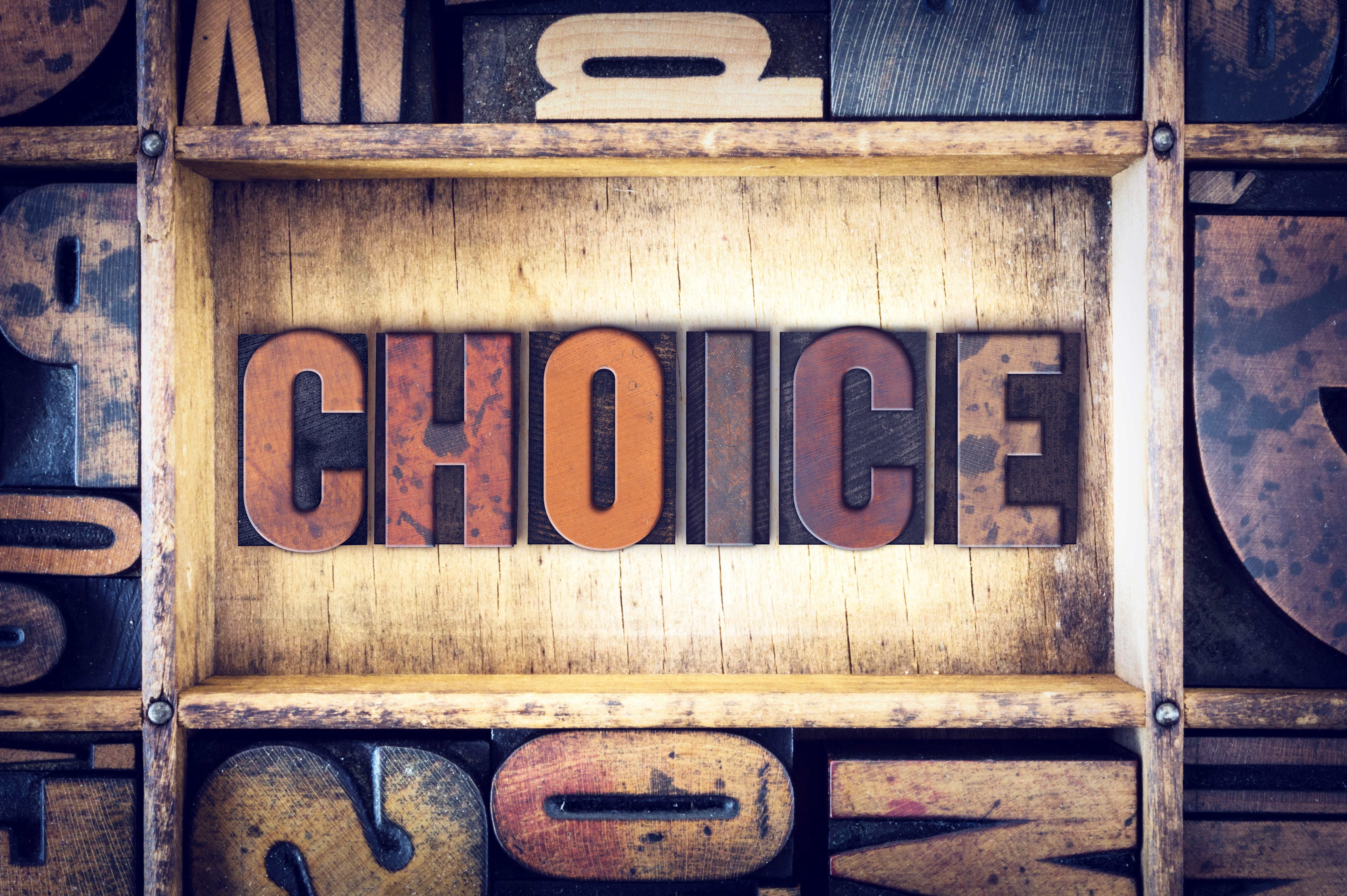 You Have a Choice of WordPress Plugins and Themes