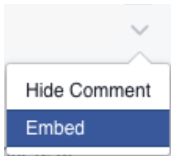 FB_F8Update_EmbedComments